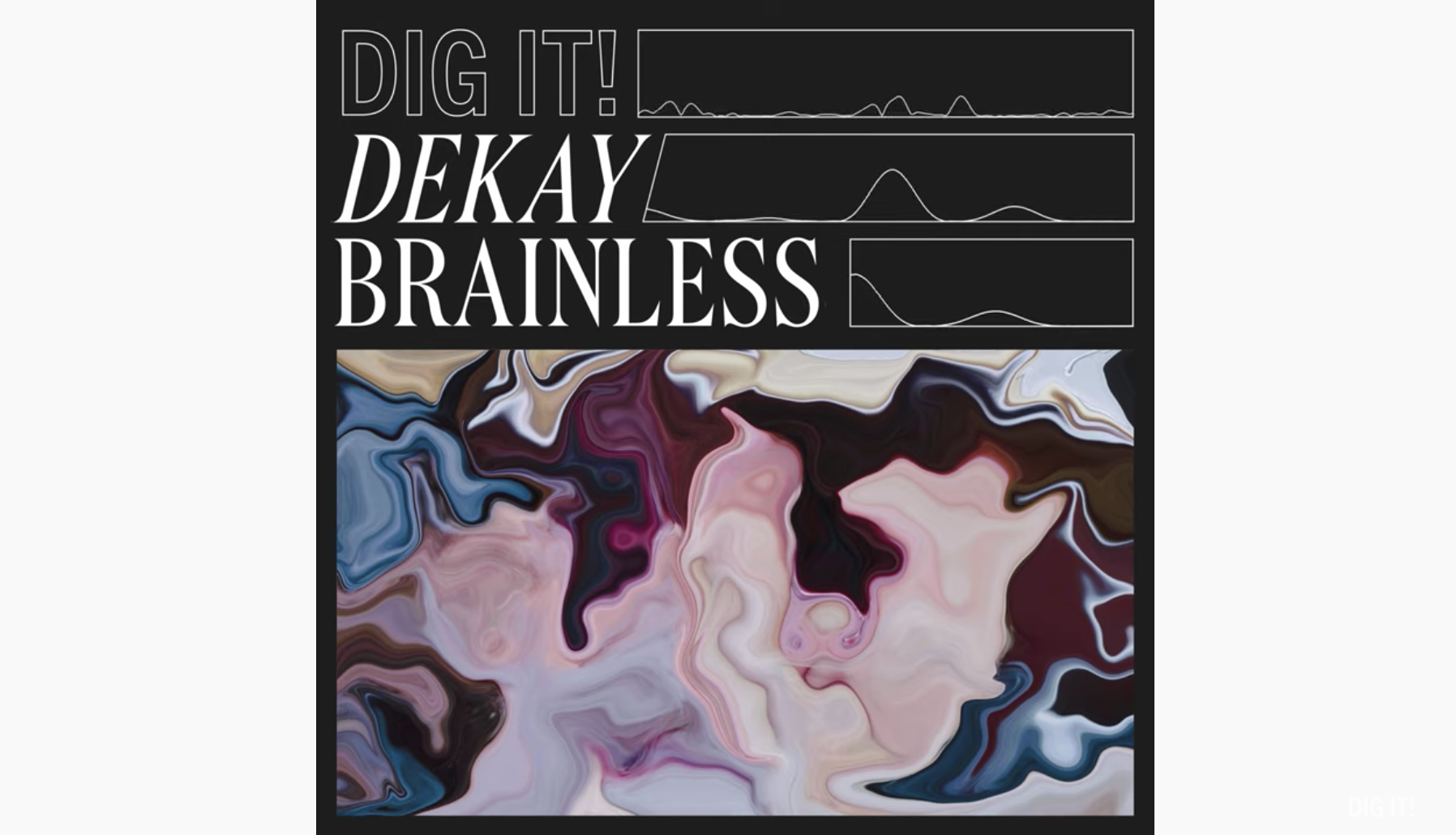 DI003 Dekay Brainless